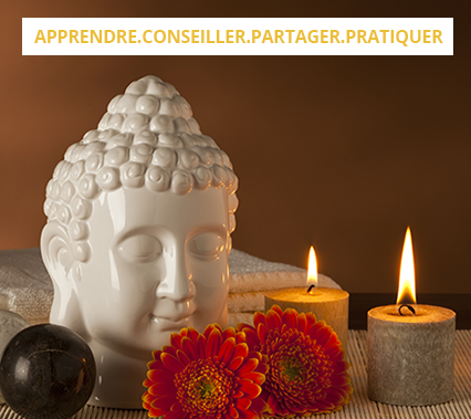 Ayurvedic-Training_FR